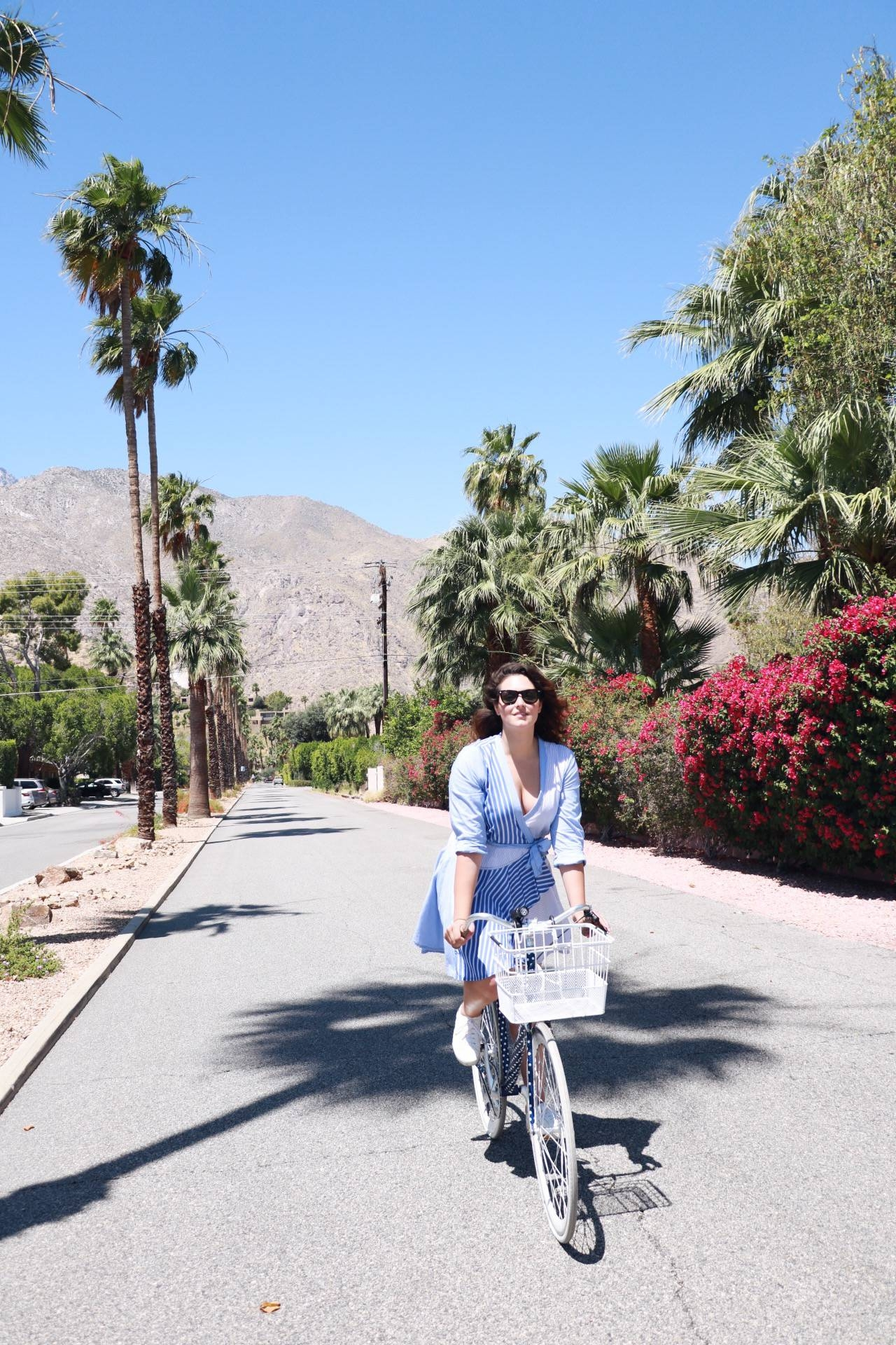 palm springs guide